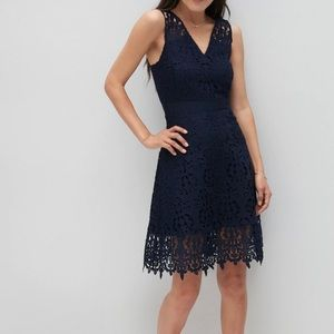 NWT Petite lace fit and flare dress